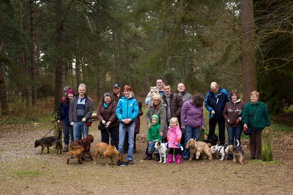 REndlesham Forest Group Dog Walk