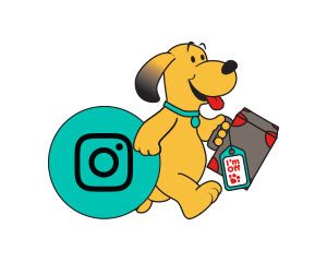 instagram-dog
